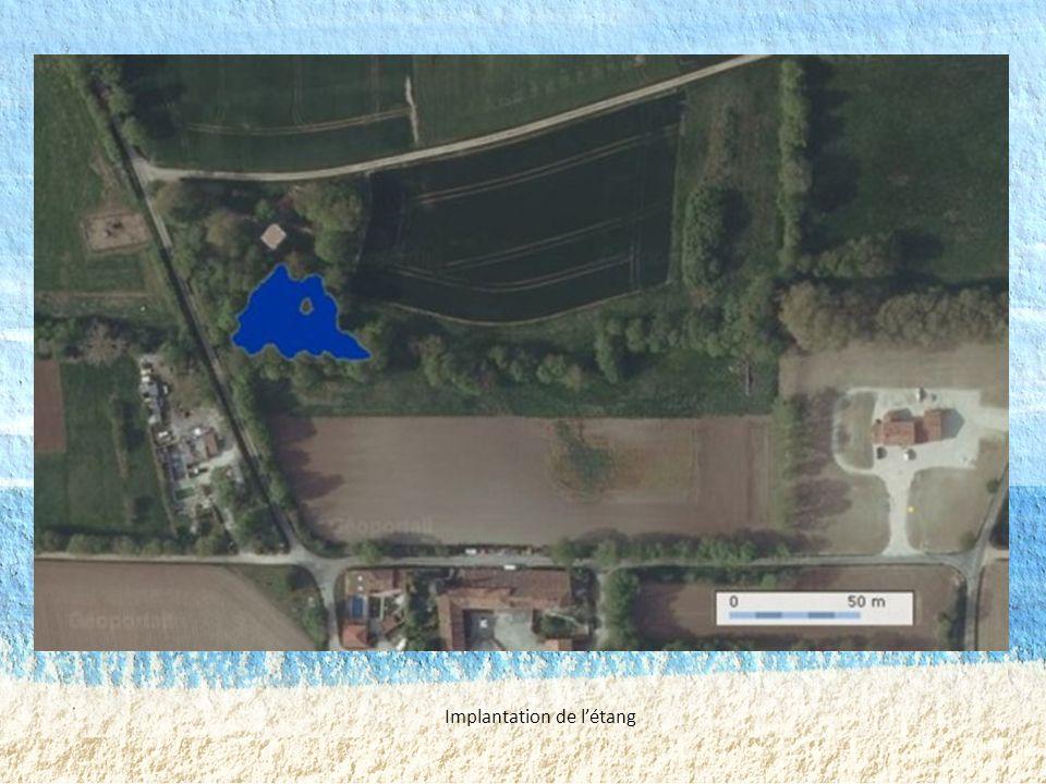Implantation de l'étang