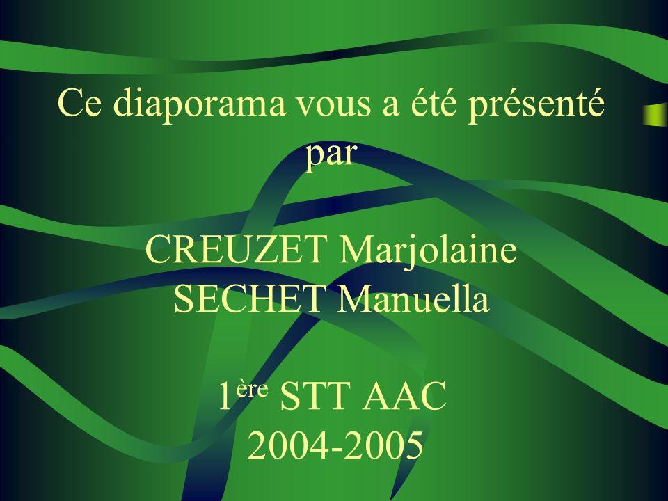 Ce diaporama vous a été présenté par CREUZET Marjolaine SECHET Manuella 1ère STT AAC 2004-2005
