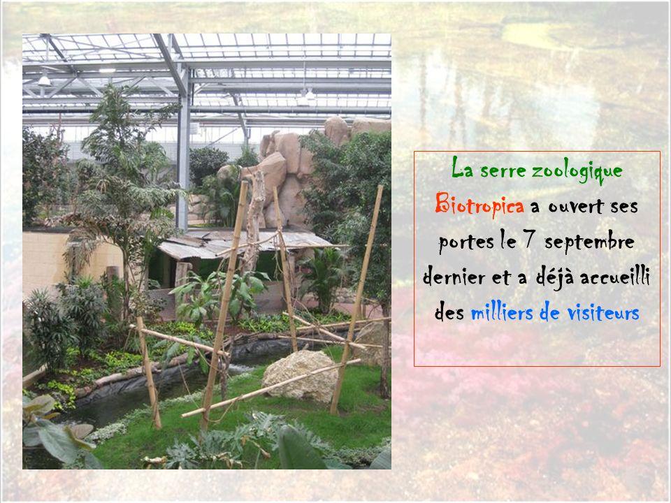 La serre zoologique Biotropica a ouvert ses portes le 7 septembre dernier et a déjà accueilli des milliers de visiteurs