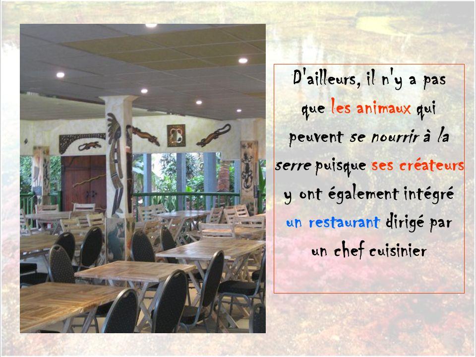 D ailleurs, il n y a pas que les animaux qui peuvent se nourrir à la serre puisque ses créateurs y ont également intégré un restaurant dirigé par.