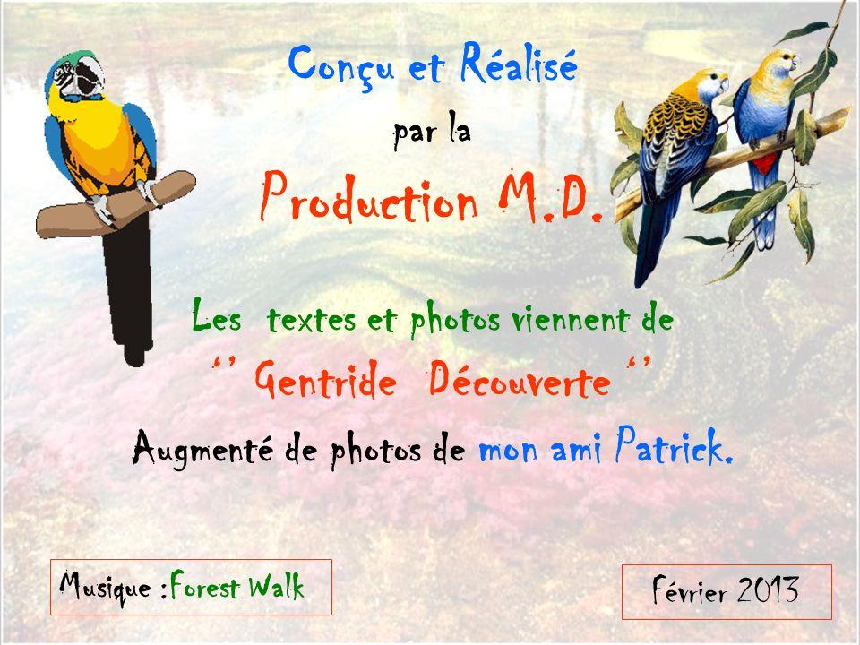 Production M.D. Conçu et Réalisé '' Gentride Découverte '' par la