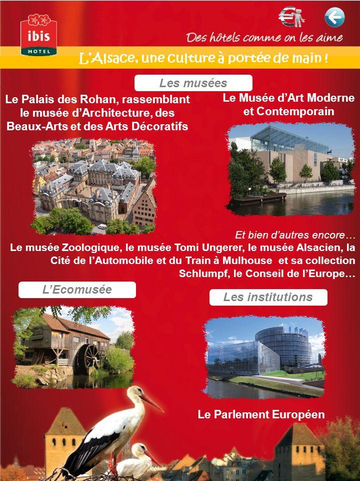 L'Alsace, une culture à portée de main !