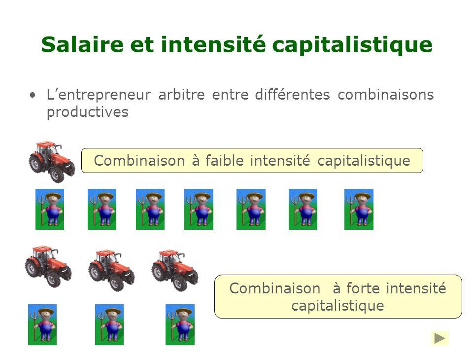 Salaire et intensité capitalistique