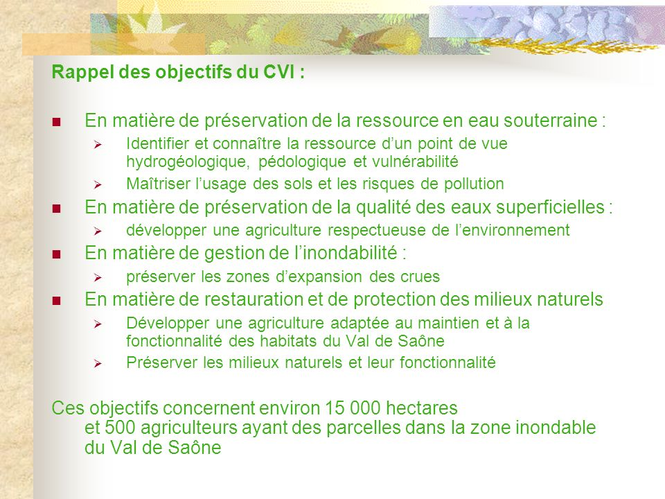 Rappel des objectifs du CVI :