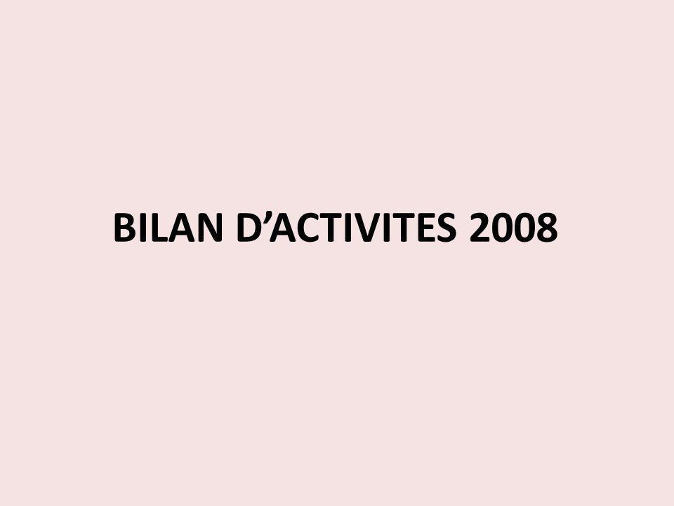 BILAN D'ACTIVITES 2008