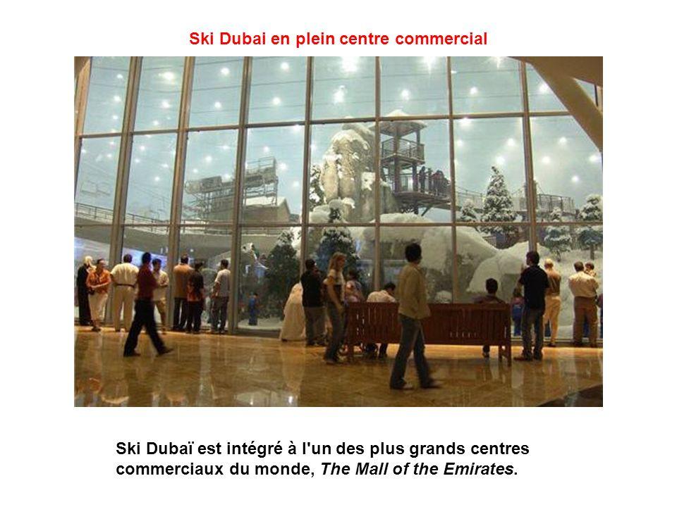 Ski Dubai en plein centre commercial