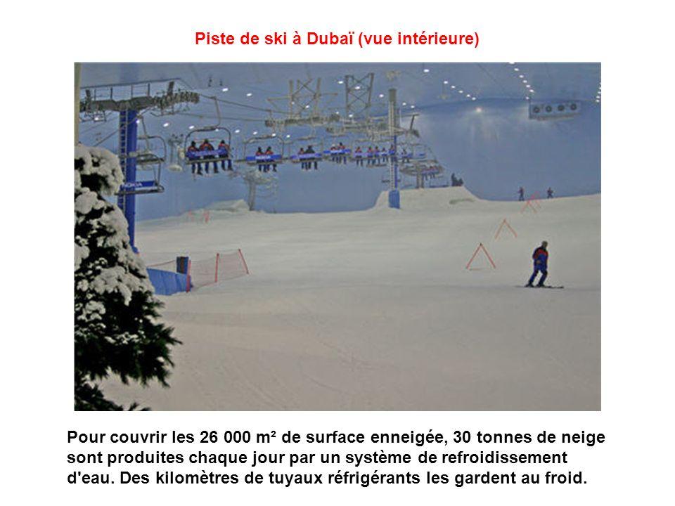 Piste de ski à Dubaï (vue intérieure)