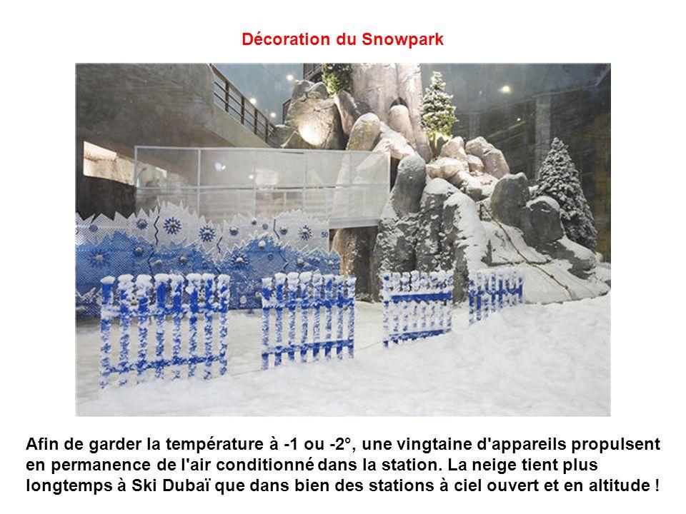 Décoration du Snowpark