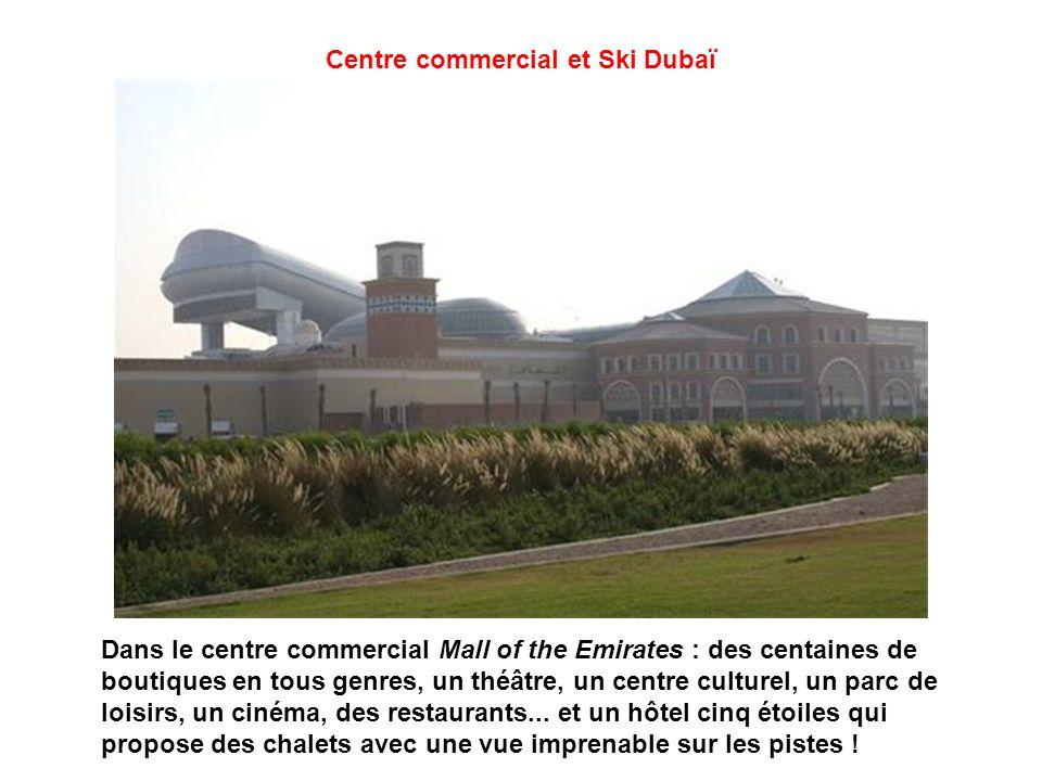 Centre commercial et Ski Dubaï
