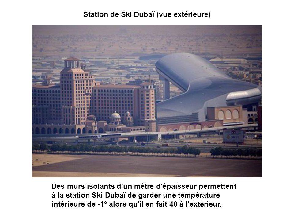 Station de Ski Dubaï (vue extérieure)