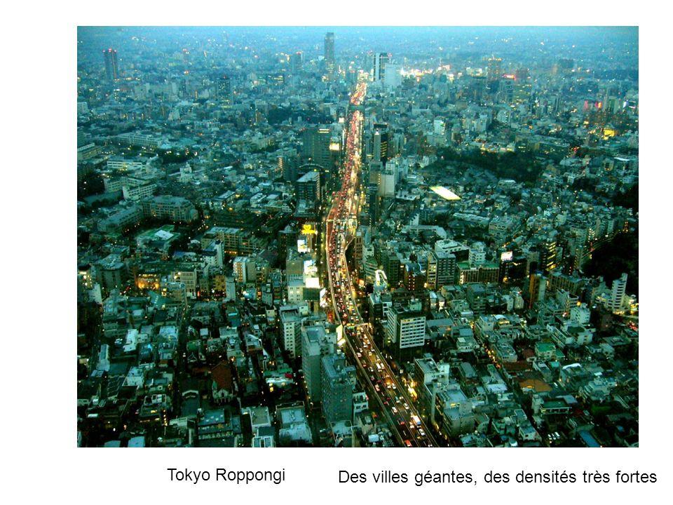 Tokyo Roppongi Des villes géantes, des densités très fortes
