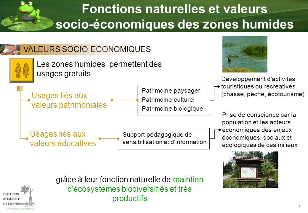 Fonctions naturelles et valeurs socio-économiques des zones humides