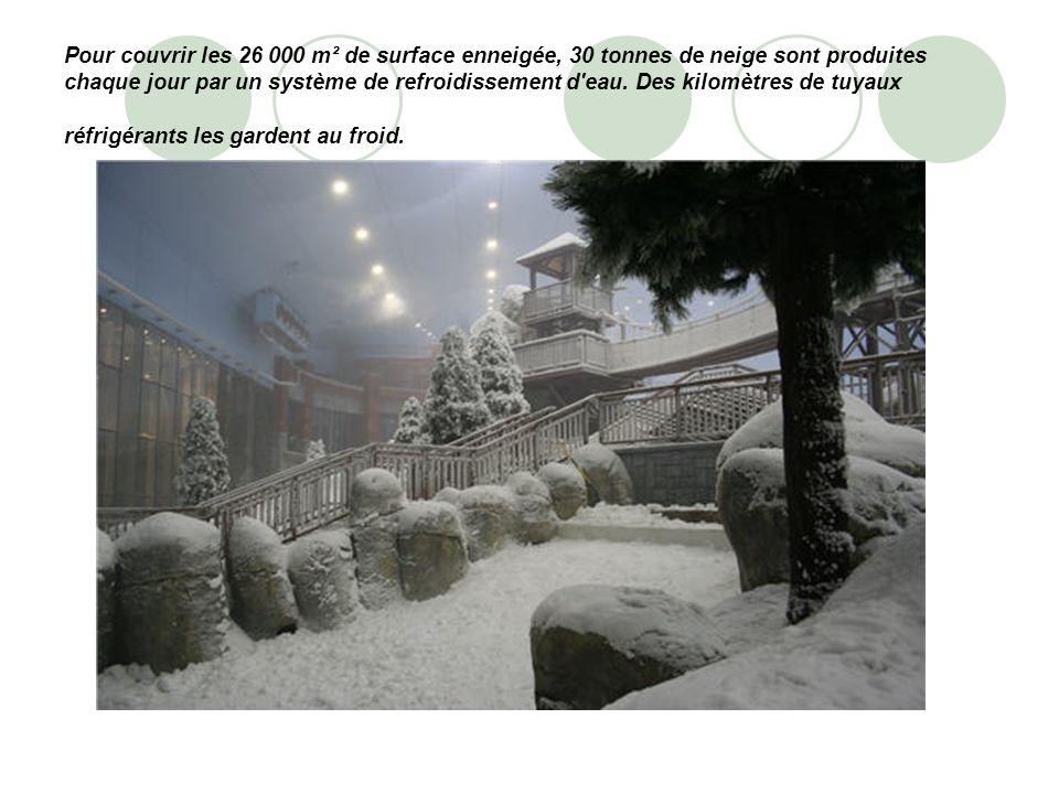 Pour couvrir les 26 000 m² de surface enneigée, 30 tonnes de neige sont produites chaque jour par un système de refroidissement d eau.