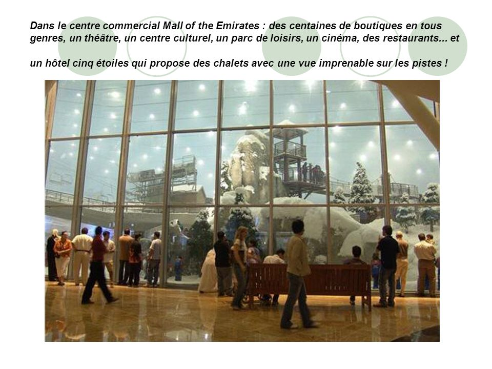 Dans le centre commercial Mall of the Emirates : des centaines de boutiques en tous genres, un théâtre, un centre culturel, un parc de loisirs, un cinéma, des restaurants...
