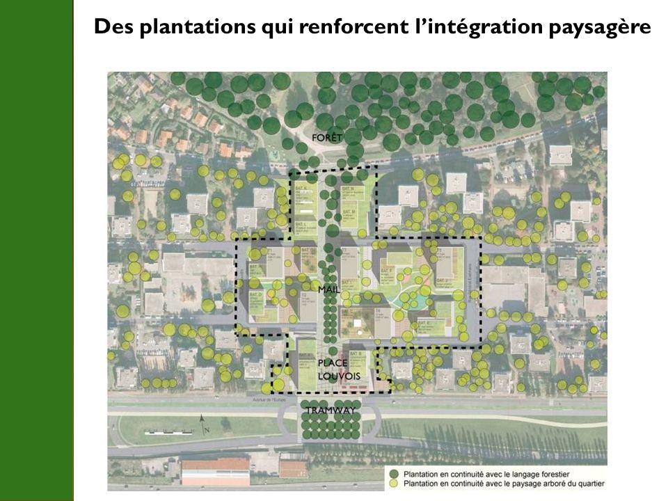 Des plantations qui renforcent l'intégration paysagère