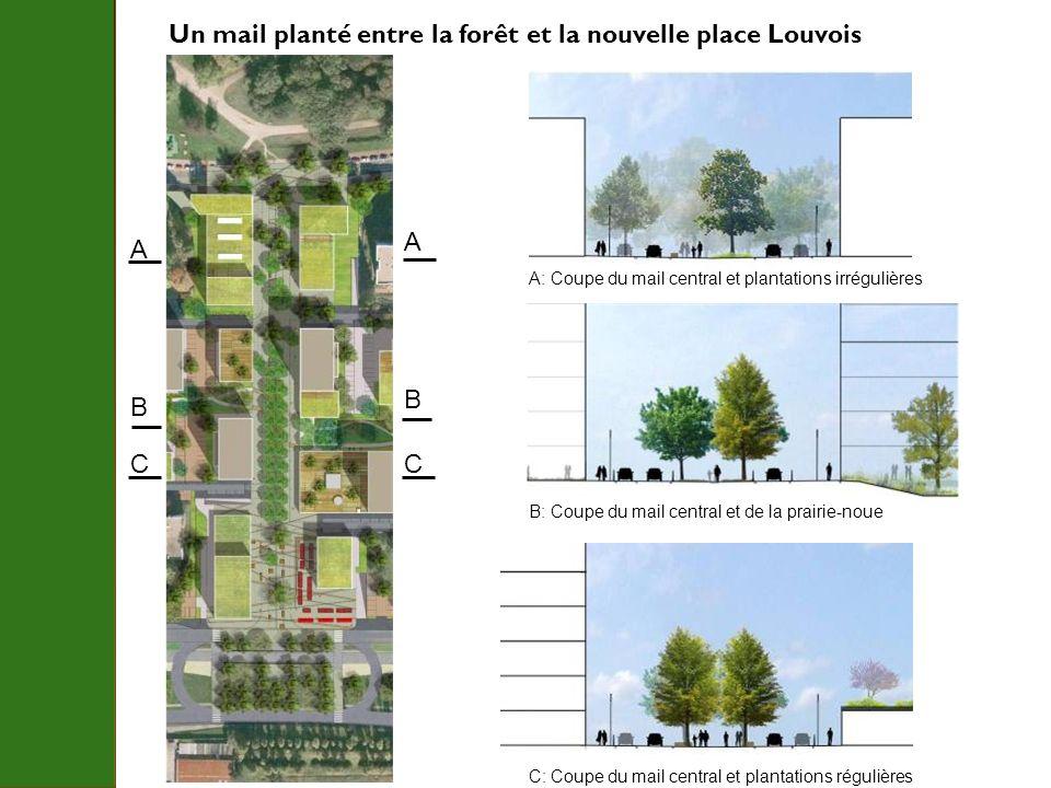 Un mail planté entre la forêt et la nouvelle place Louvois