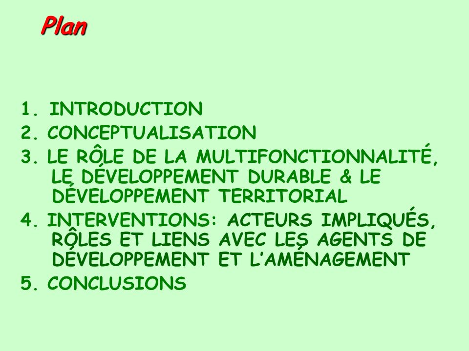 Plan 1. INTRODUCTION 2. CONCEPTUALISATION