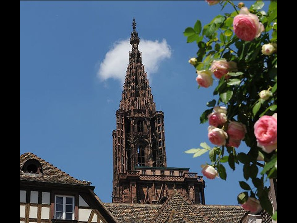 Le Zénith Strasbourg-Europe