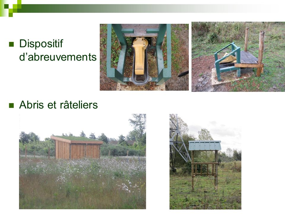 Dispositif d'abreuvements
