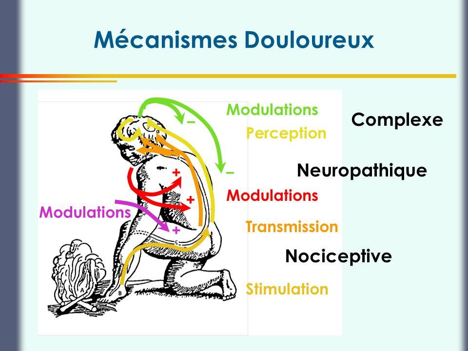 Mécanismes Douloureux