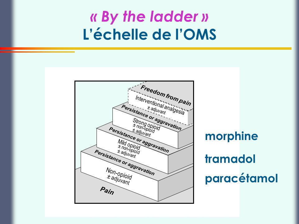 « By the ladder » L'échelle de l'OMS