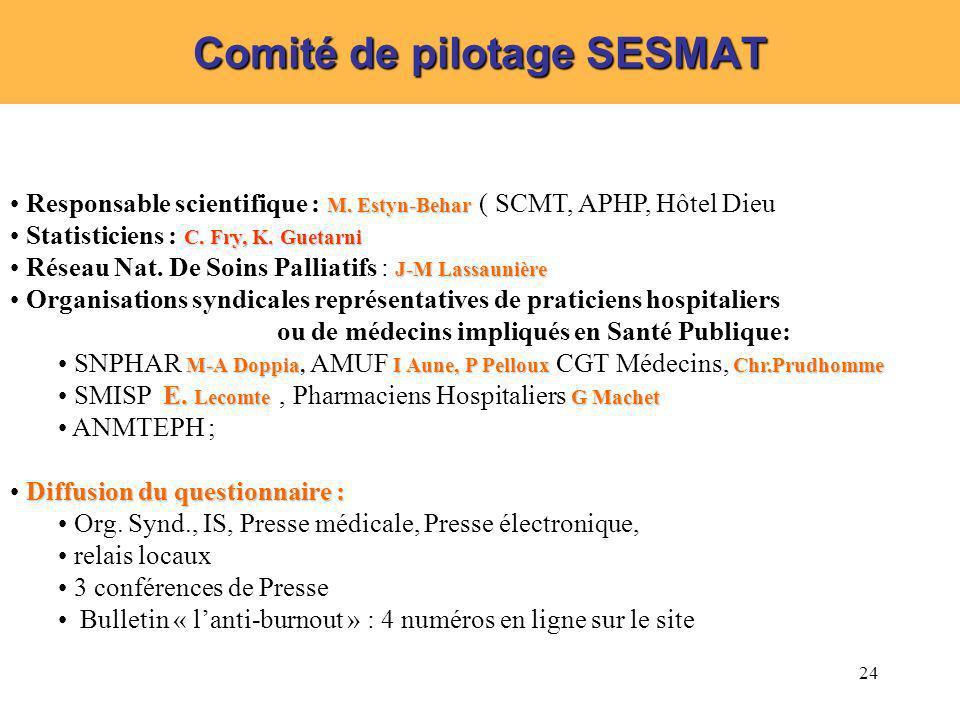 Comité de pilotage SESMAT