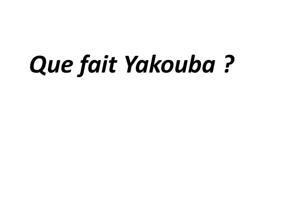 Que fait Yakouba