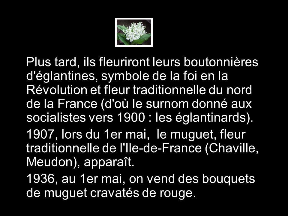 Plus tard, ils fleuriront leurs boutonnières d églantines, symbole de la foi en la Révolution et fleur traditionnelle du nord de la France (d où le surnom donné aux socialistes vers 1900 : les églantinards).