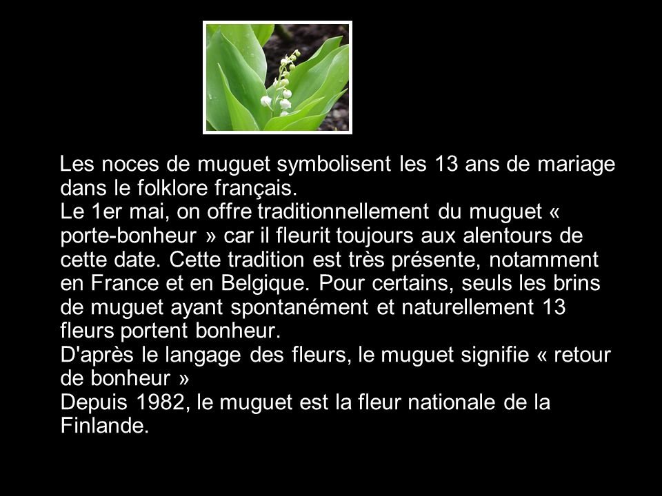 Les noces de muguet symbolisent les 13 ans de mariage dans le folklore français.