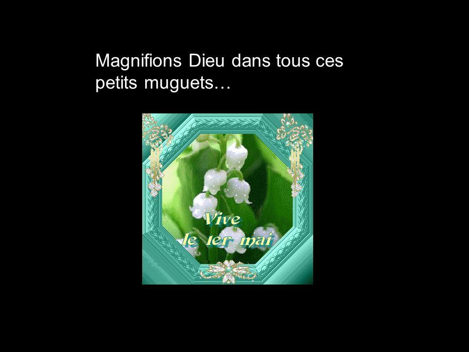 Magnifions Dieu dans tous ces petits muguets…