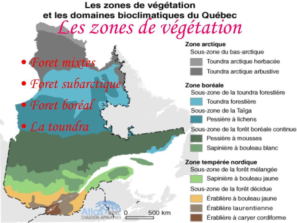 Les zones de végétation