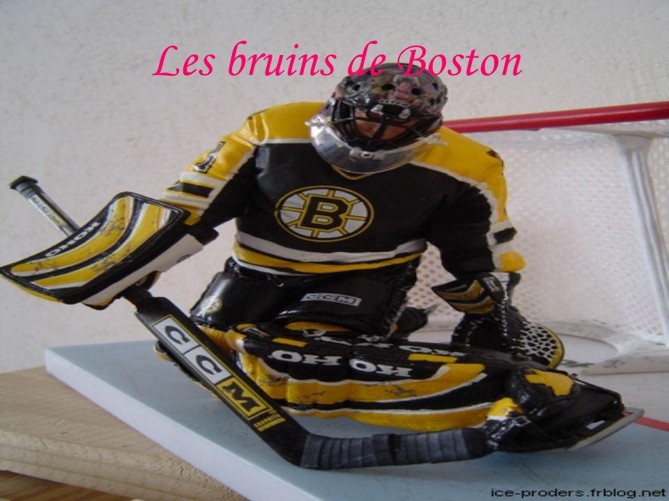 Les bruins de Boston