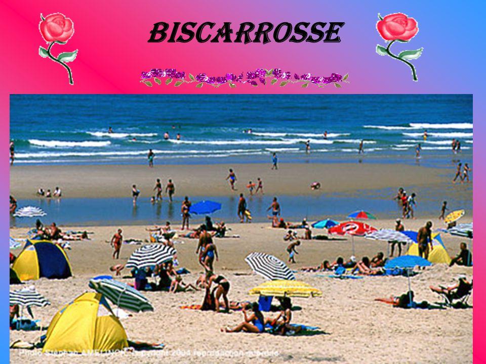 Biscarrosse