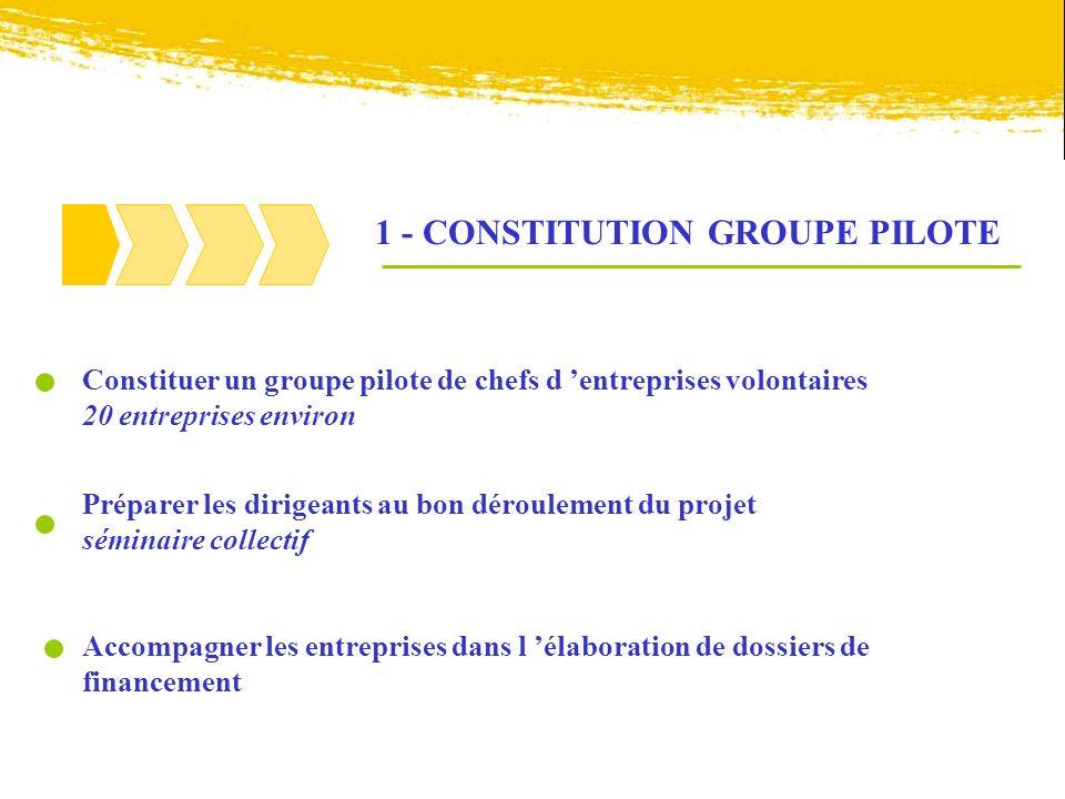 1 - CONSTITUTION GROUPE PILOTE