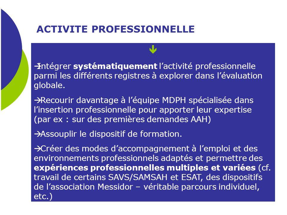 ACTIVITE PROFESSIONNELLE