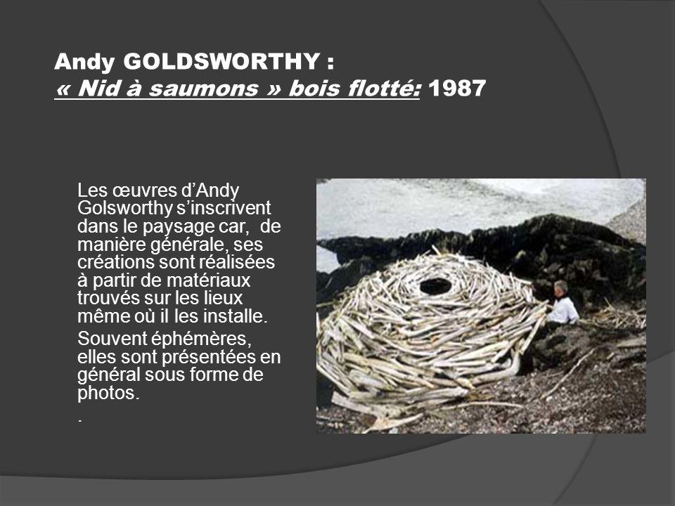 Andy GOLDSWORTHY : « Nid à saumons » bois flotté: 1987