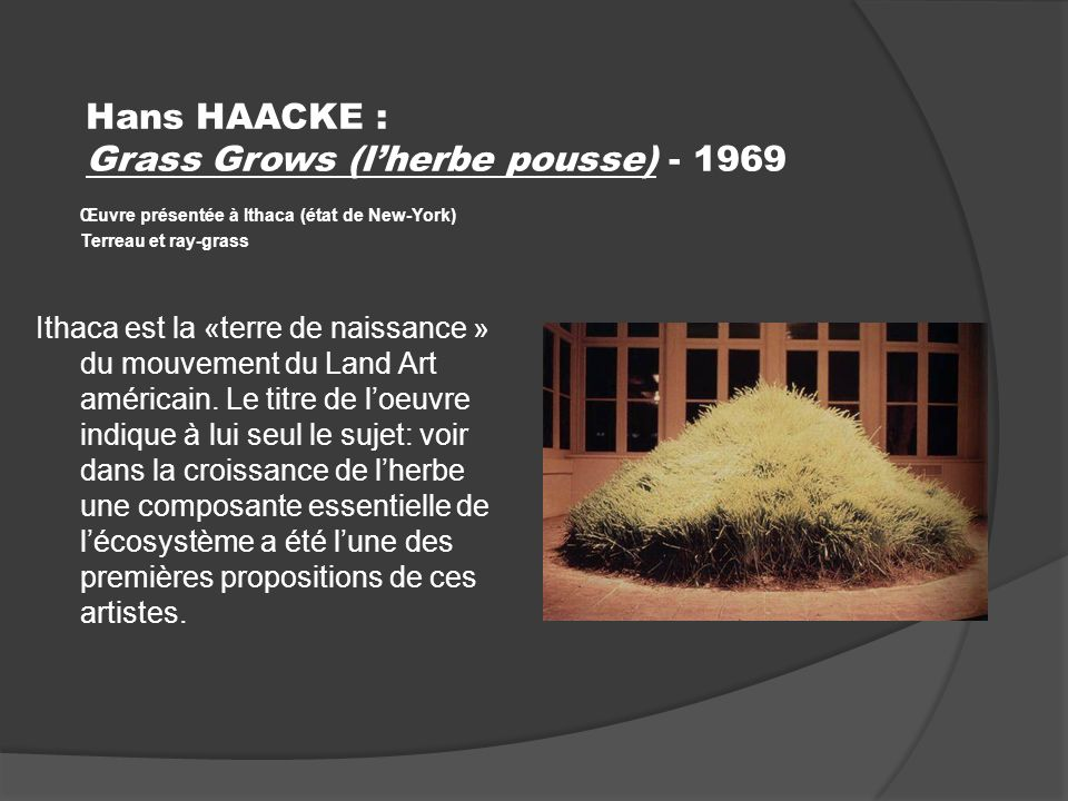 Hans HAACKE : Grass Grows (l'herbe pousse) - 1969