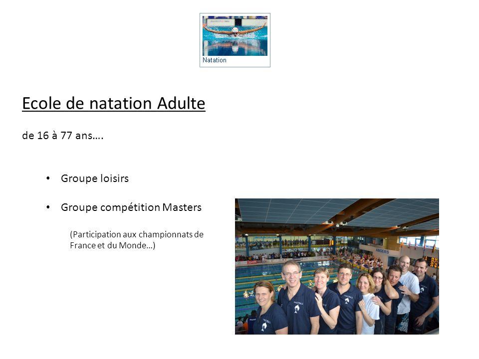 Ecole de natation Adulte