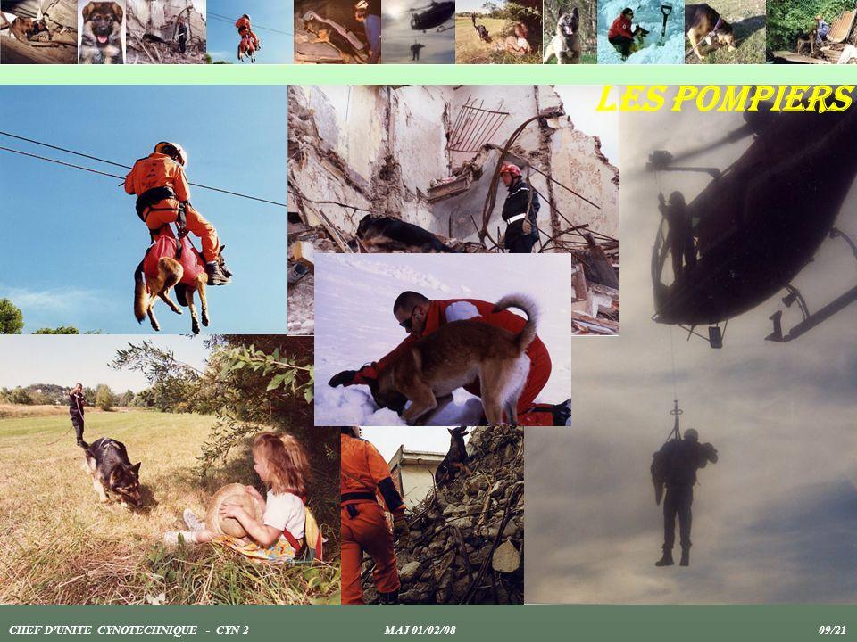 Les pompiers CHEF D'UNITE CYNOTECHNIQUE - CYN 2 MAJ 01/02/08 09/21.