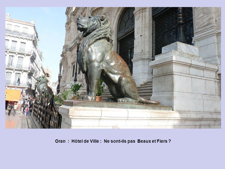 Oran : Hôtel de Ville : Ne sont-ils pas Beaux et Fiers