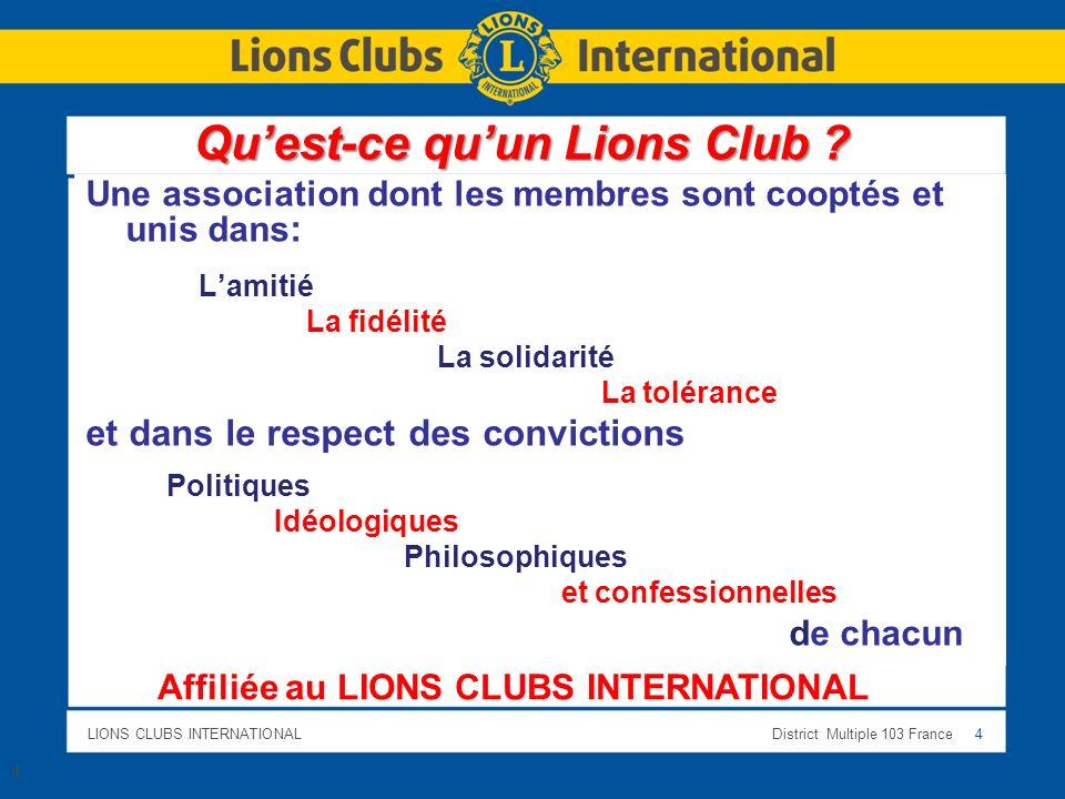 Qu'est-ce qu'un Lions Club