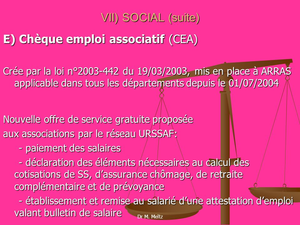 E) Chèque emploi associatif (CEA)