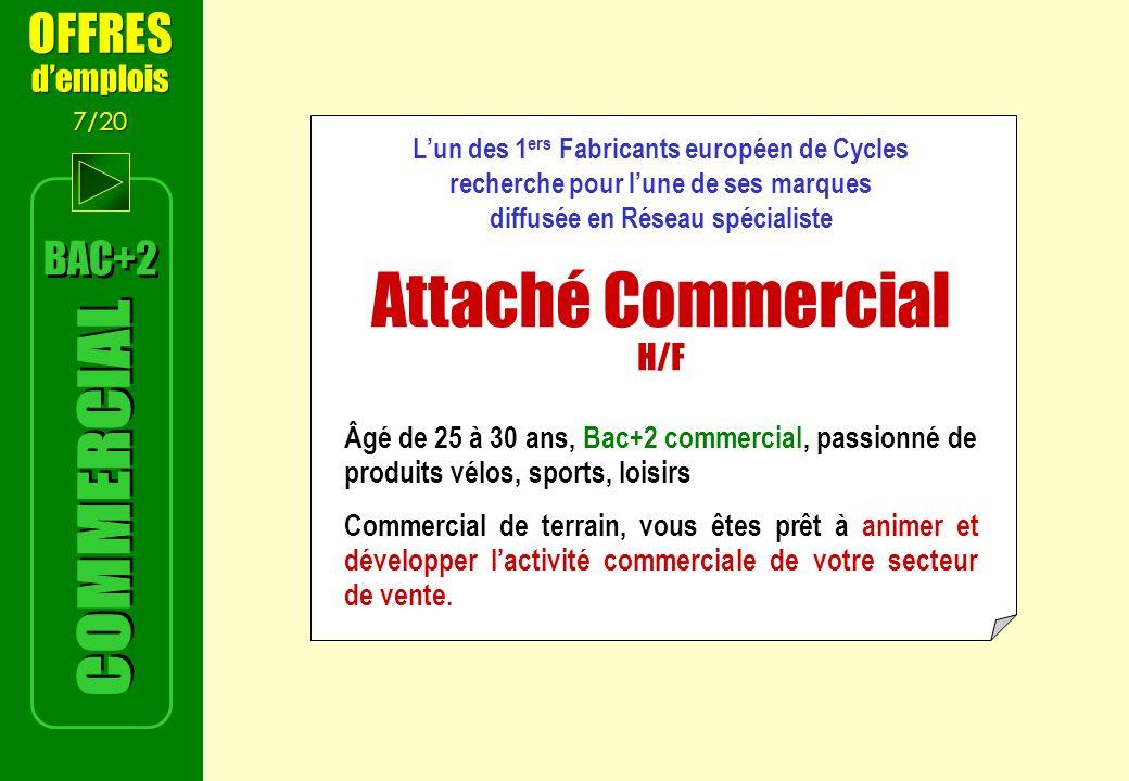 Attaché Commercial H/F