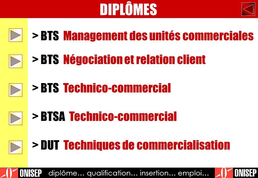 diplôme… qualification… insertion… emploi…