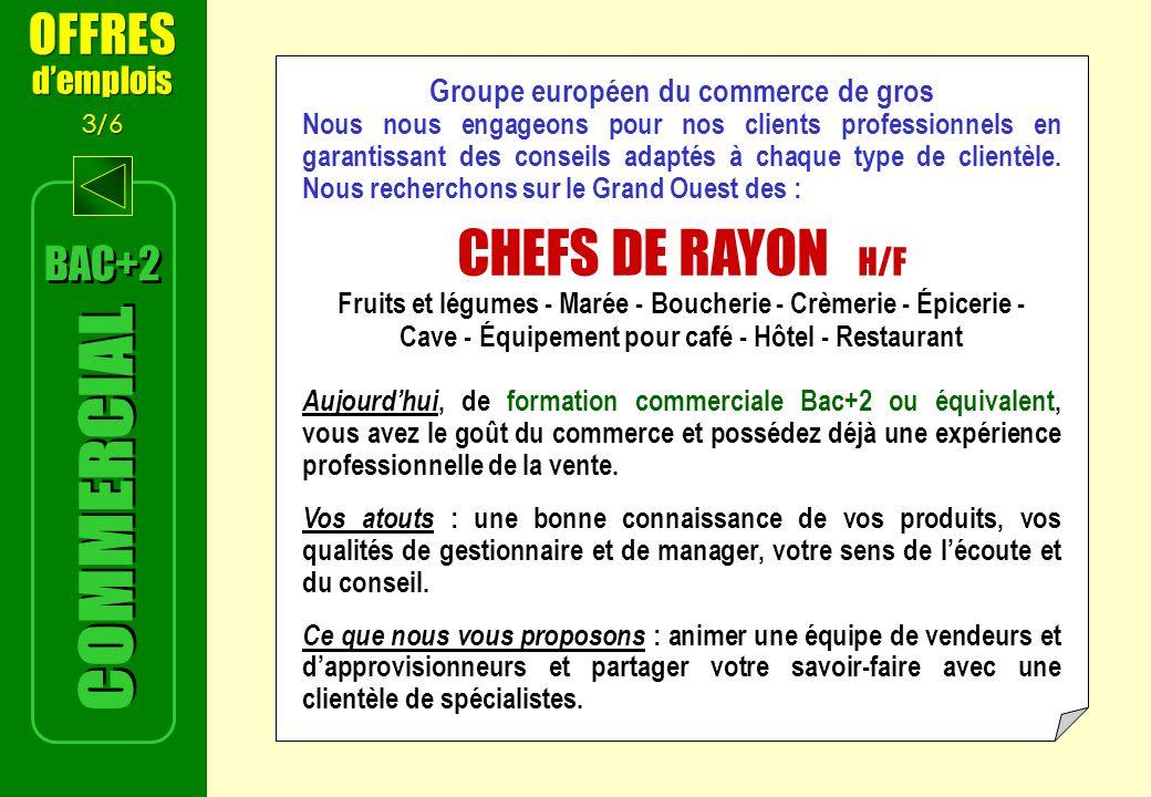 CHEFS DE RAYON H/F COMMERCIAL OFFRES BAC+2 d'emplois