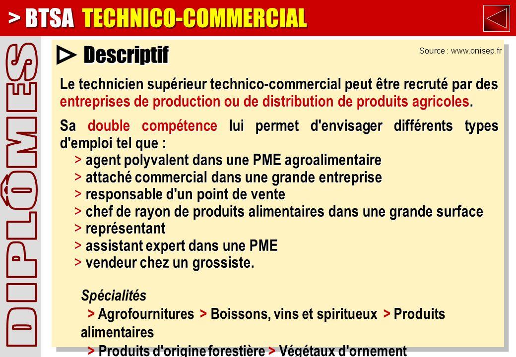 > BTSA TECHNICO-COMMERCIAL