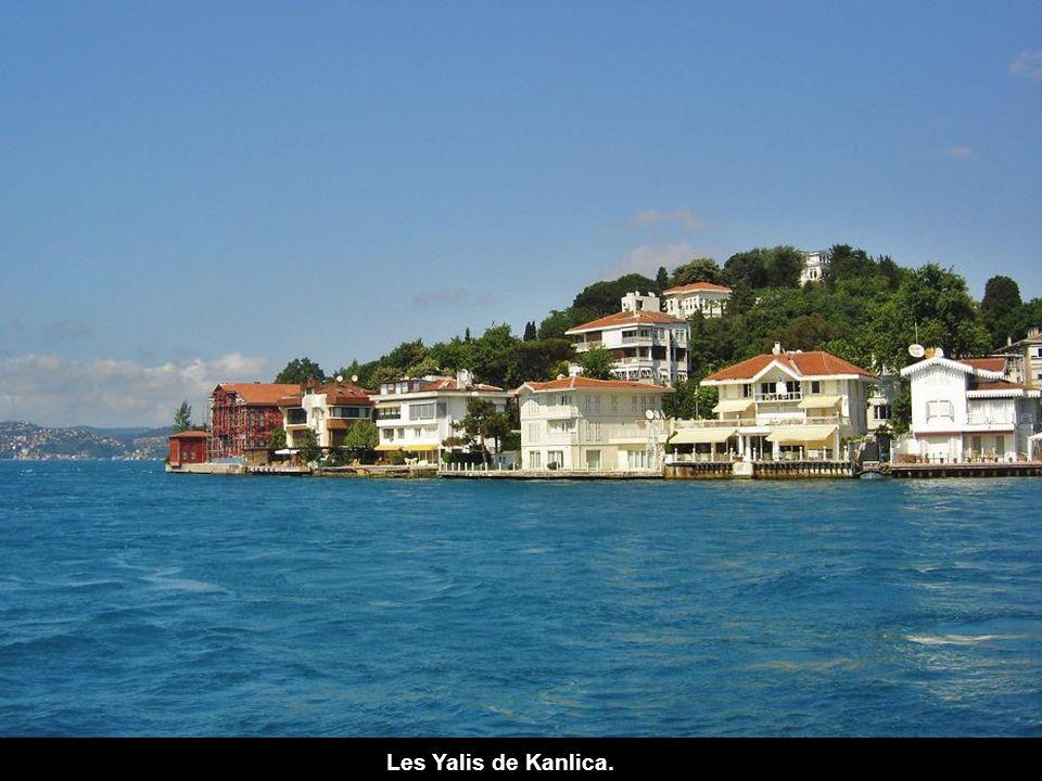 Les Yalis de Kanlica.