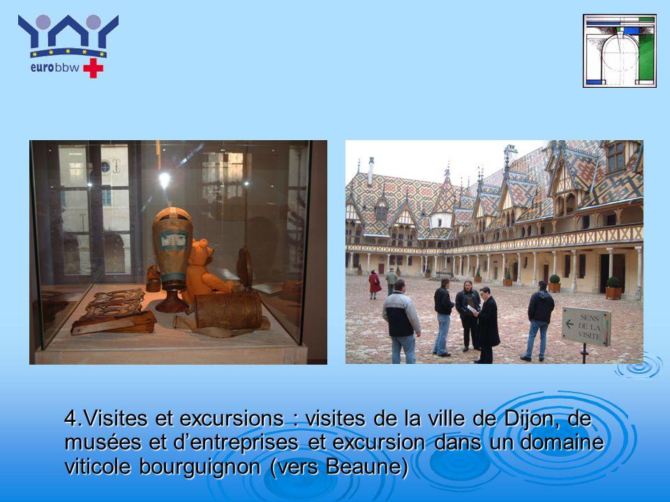 4.Visites et excursions : visites de la ville de Dijon, de musées et d'entreprises et excursion dans un domaine viticole bourguignon (vers Beaune)