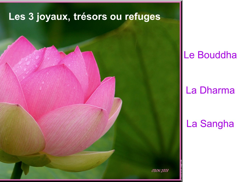 Les 3 joyaux, trésors ou refuges
