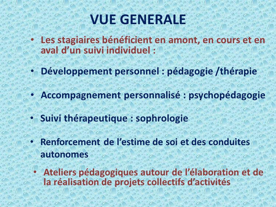 VUE GENERALE Les stagiaires bénéficient en amont, en cours et en aval d'un suivi individuel : Développement personnel : pédagogie /thérapie.